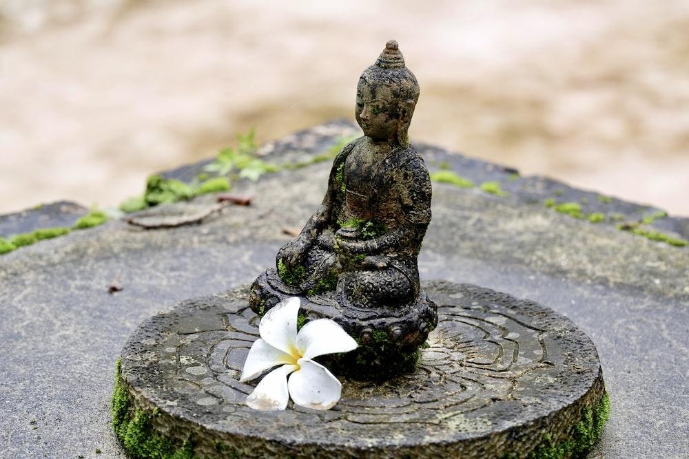 Buddha figurine on table with flower