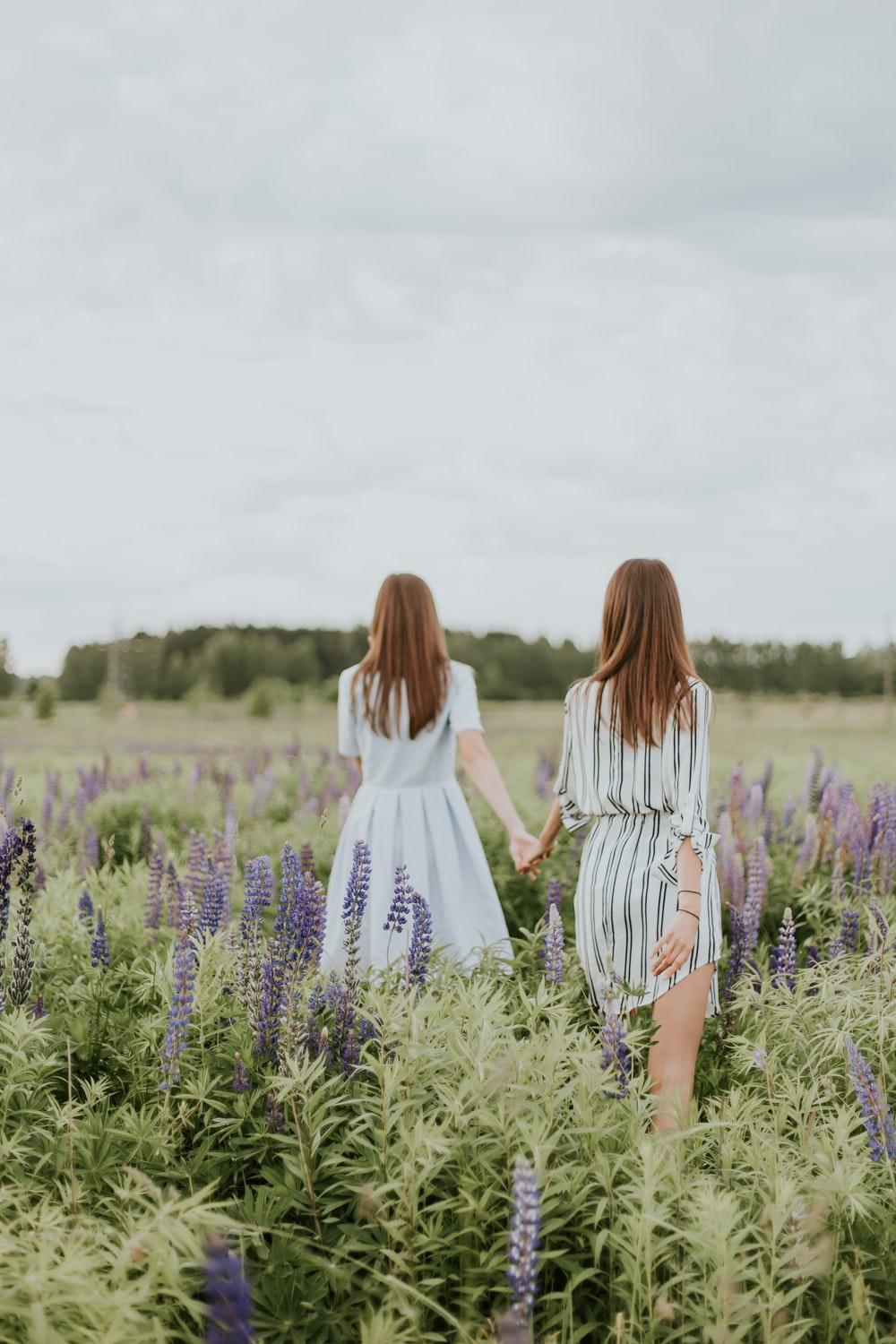 two women surrounded by lavender under nimbus clouds