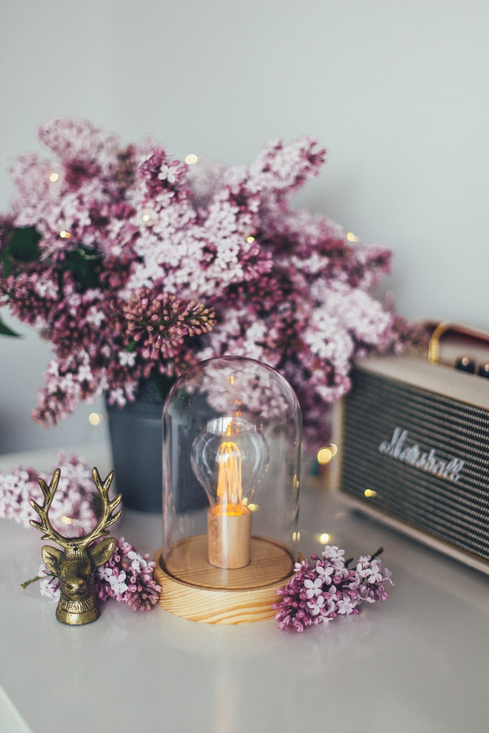 pink and purple flowers beside brown Marshall guitar head amplifier