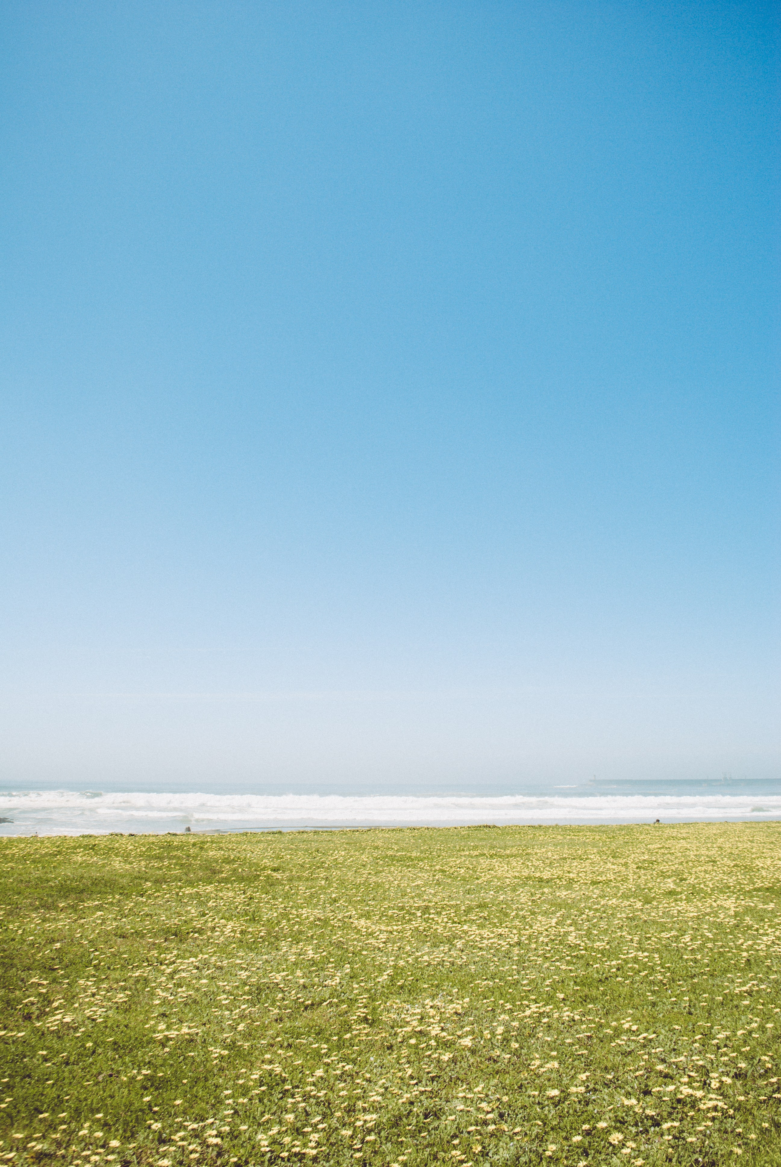 panoramic photography of grass field near body of water