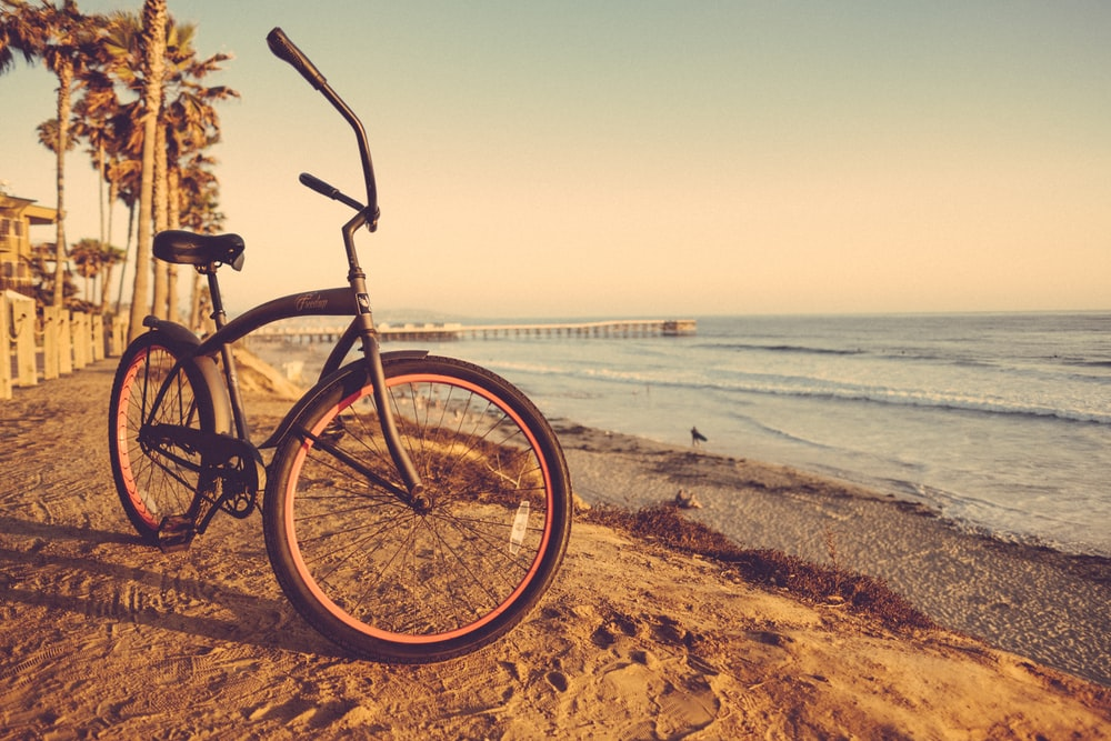 cruzer bike on seashore