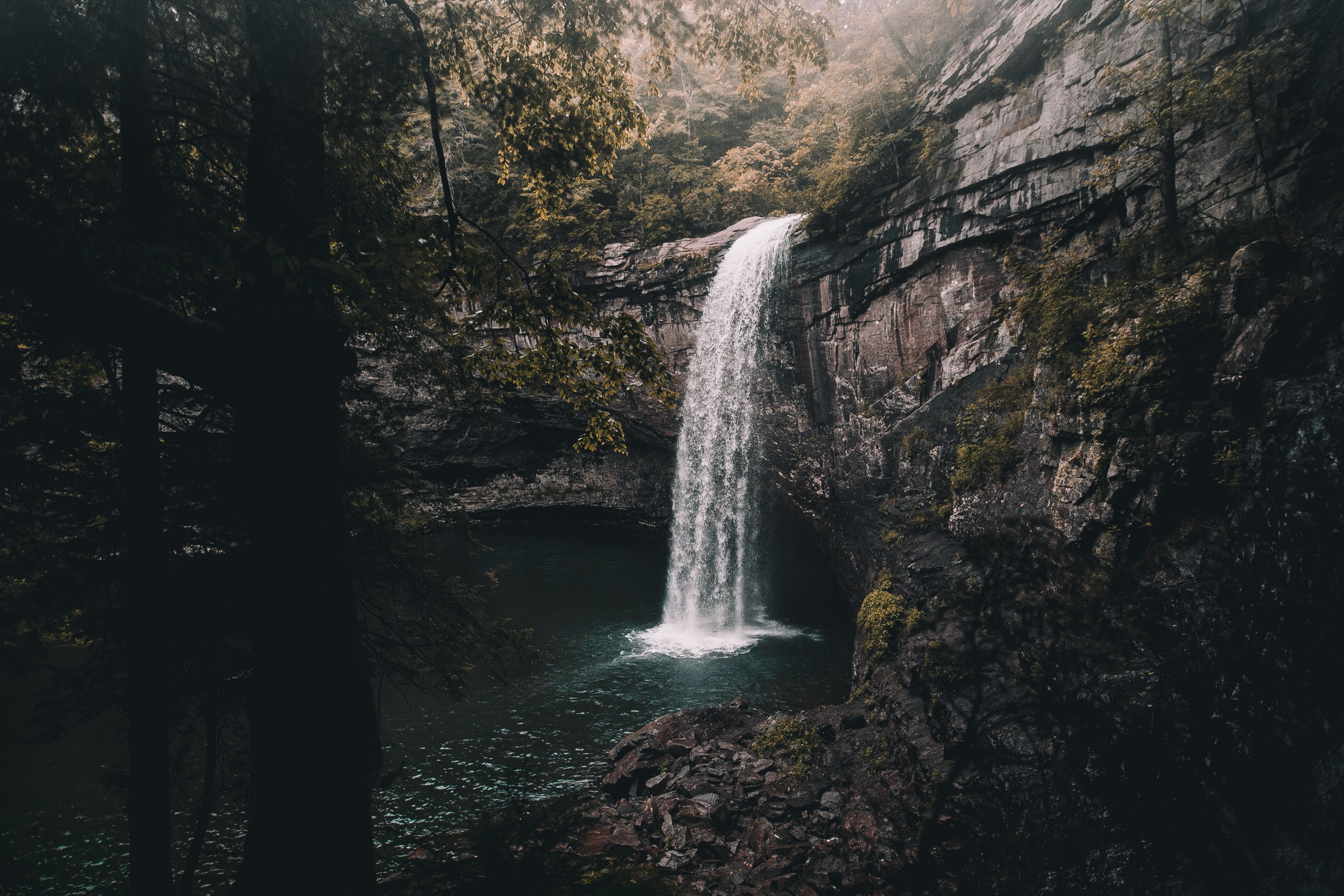 waterfalls between trees and grass