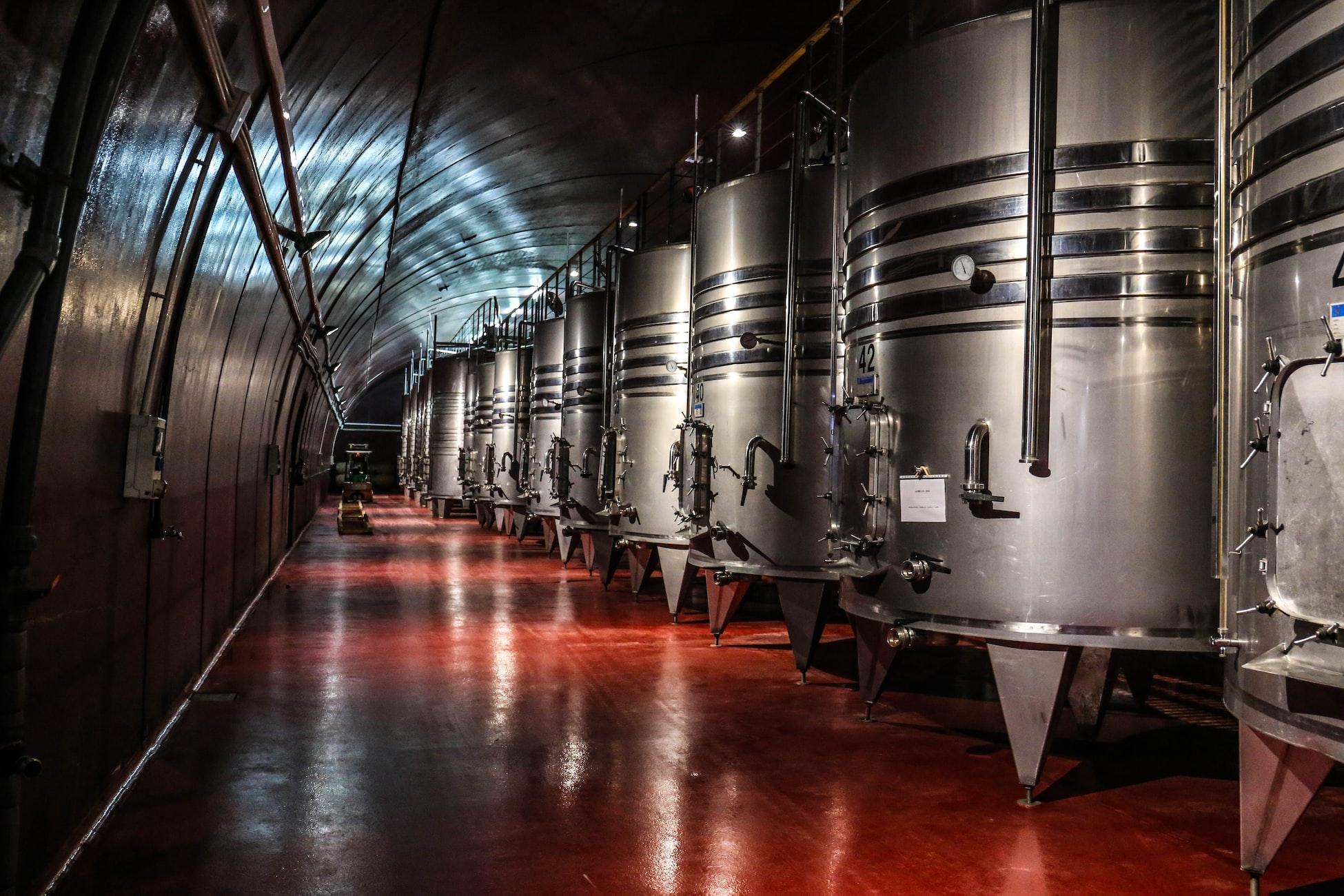Perfect Winecellar by David Vogel