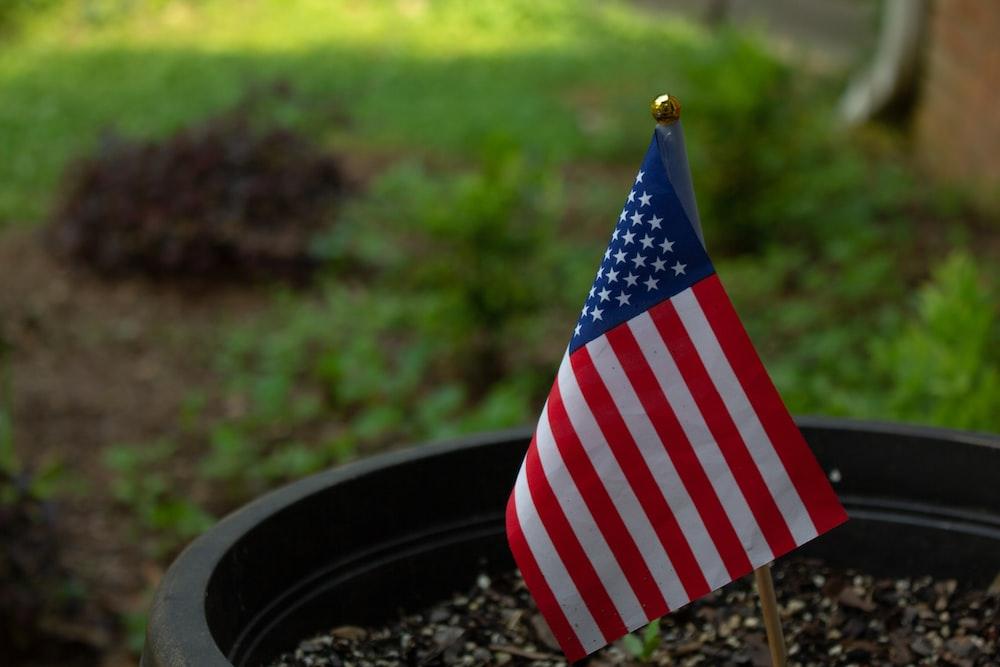 flag of U.S.A on plant pot