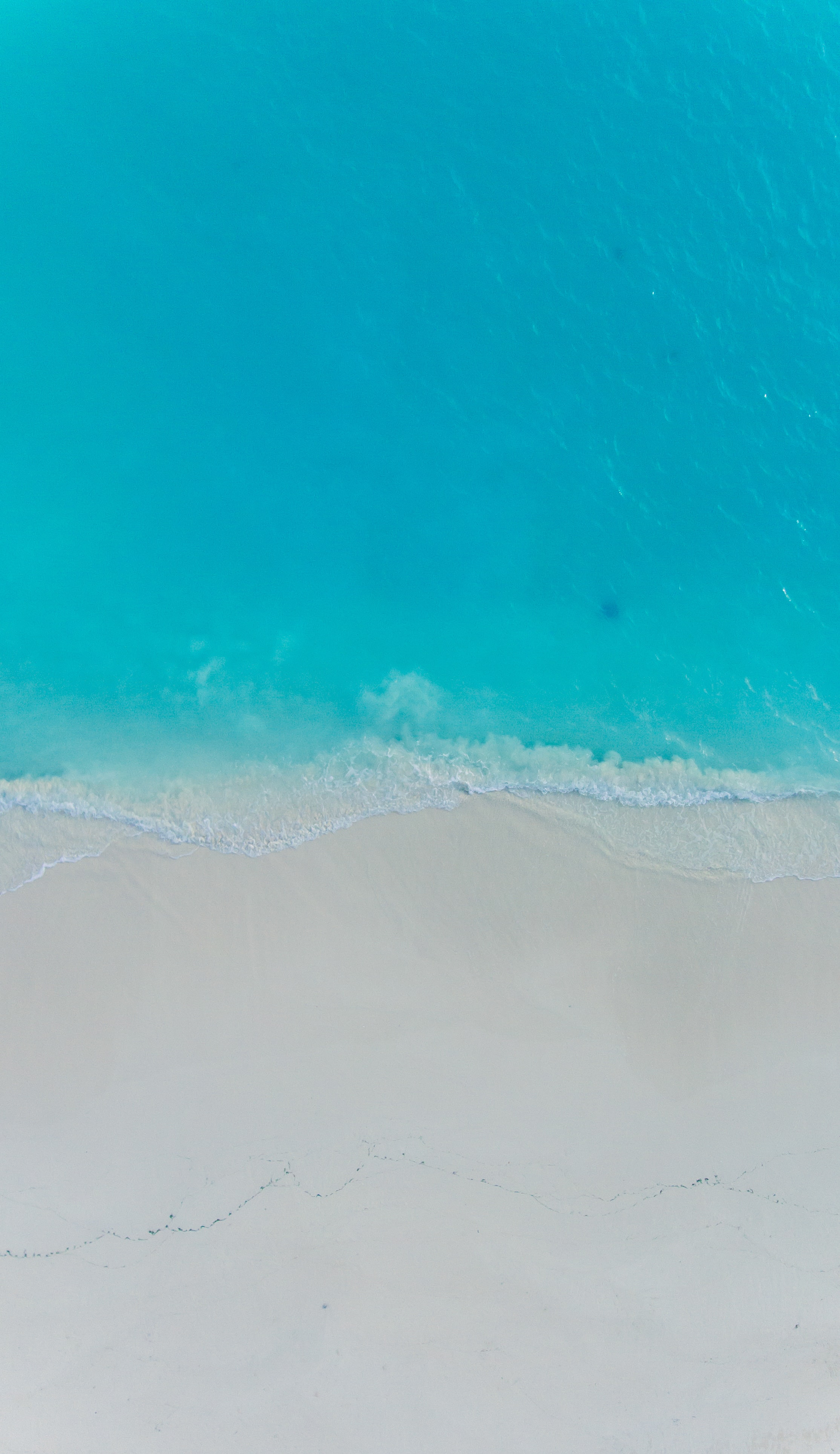 aerial photography of shore