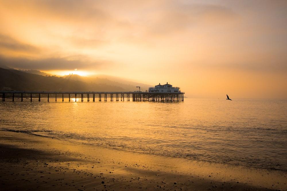 white wooden dock on beach during golden hour