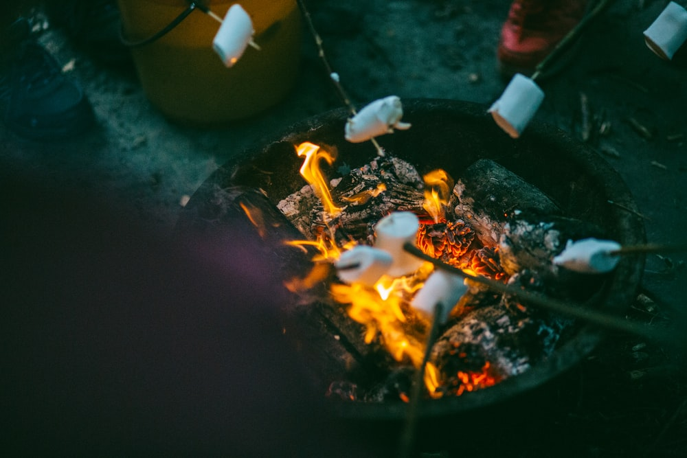 people grilling marshmallows