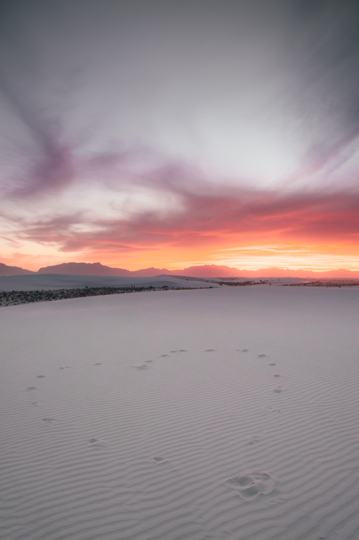 white desert during golden hour