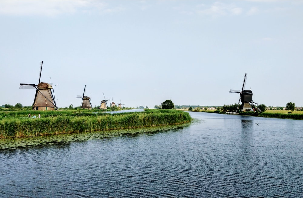 body of water beside green trees and wind mills