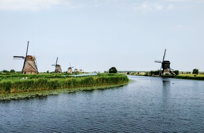 body of water beside green trees and wind mills netherlands zoom background