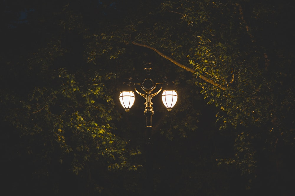 lighted lamp post
