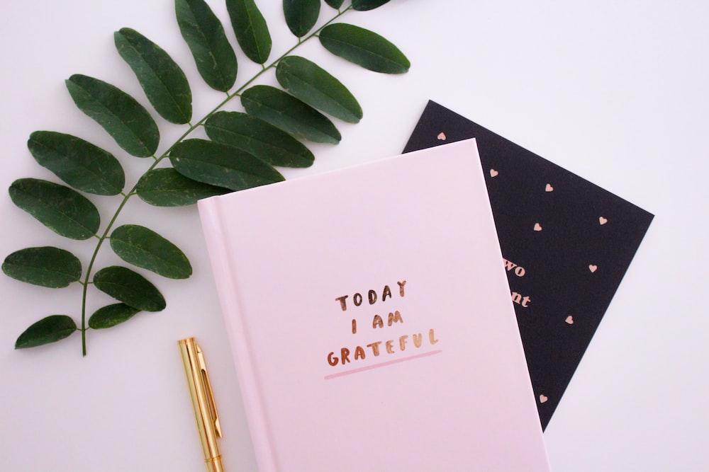 Today I am Grateful book