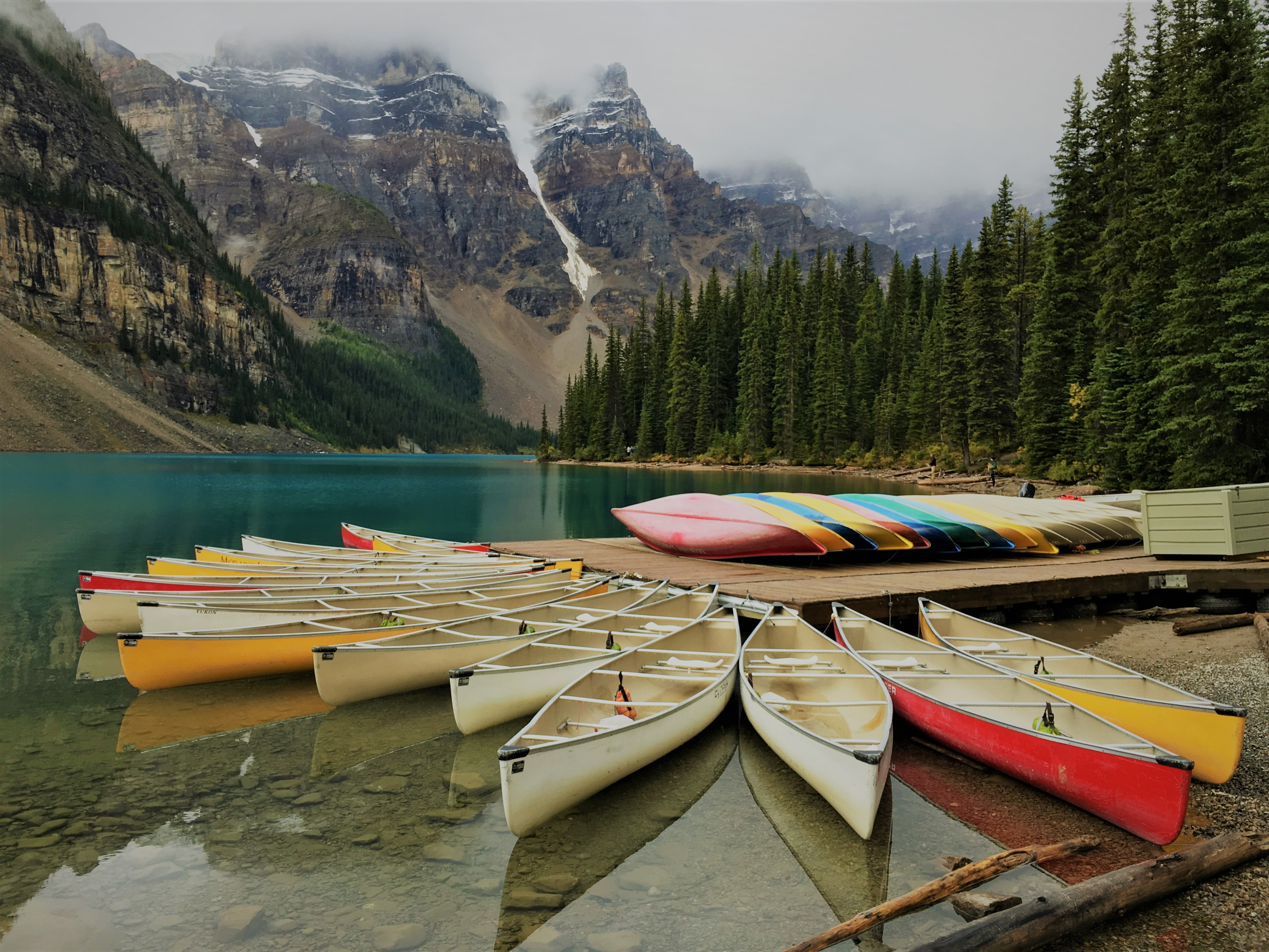 photo of assorted-color canoes on body of water surrounded by pine trees