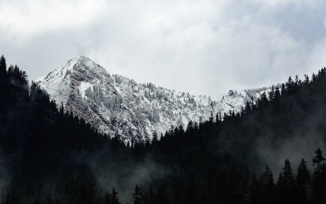 Whenever I drive through Snoqualmie Pass in Washington State, I have to stop and take some mountain photos.