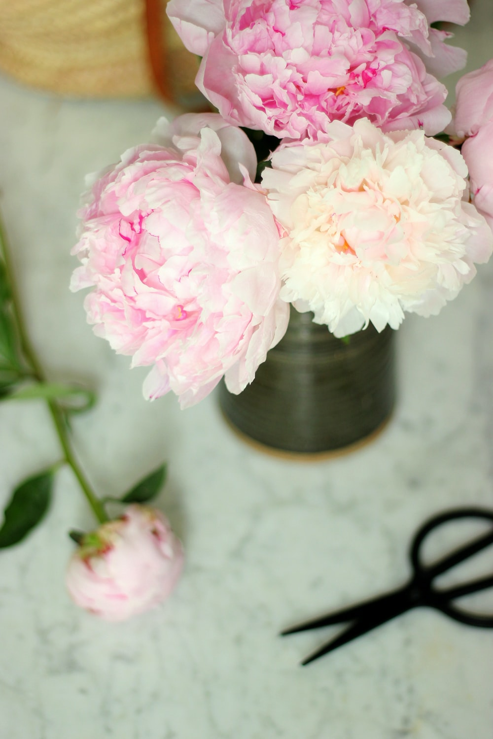 Bright flower arrangement pictures download free images on unsplash pink and white flowers in vase mightylinksfo
