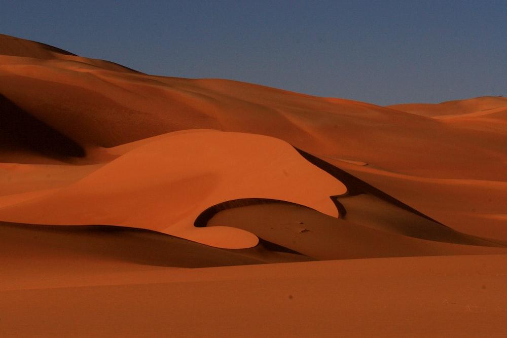 desert sand during dawn