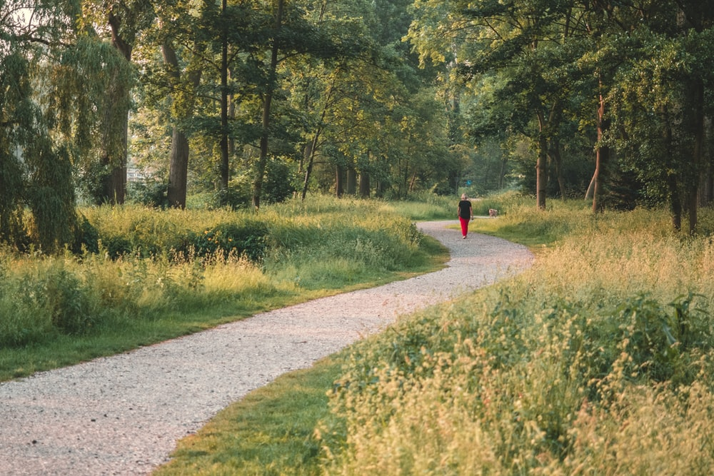 person in red jacket walking on pathway between green grass and trees during daytime