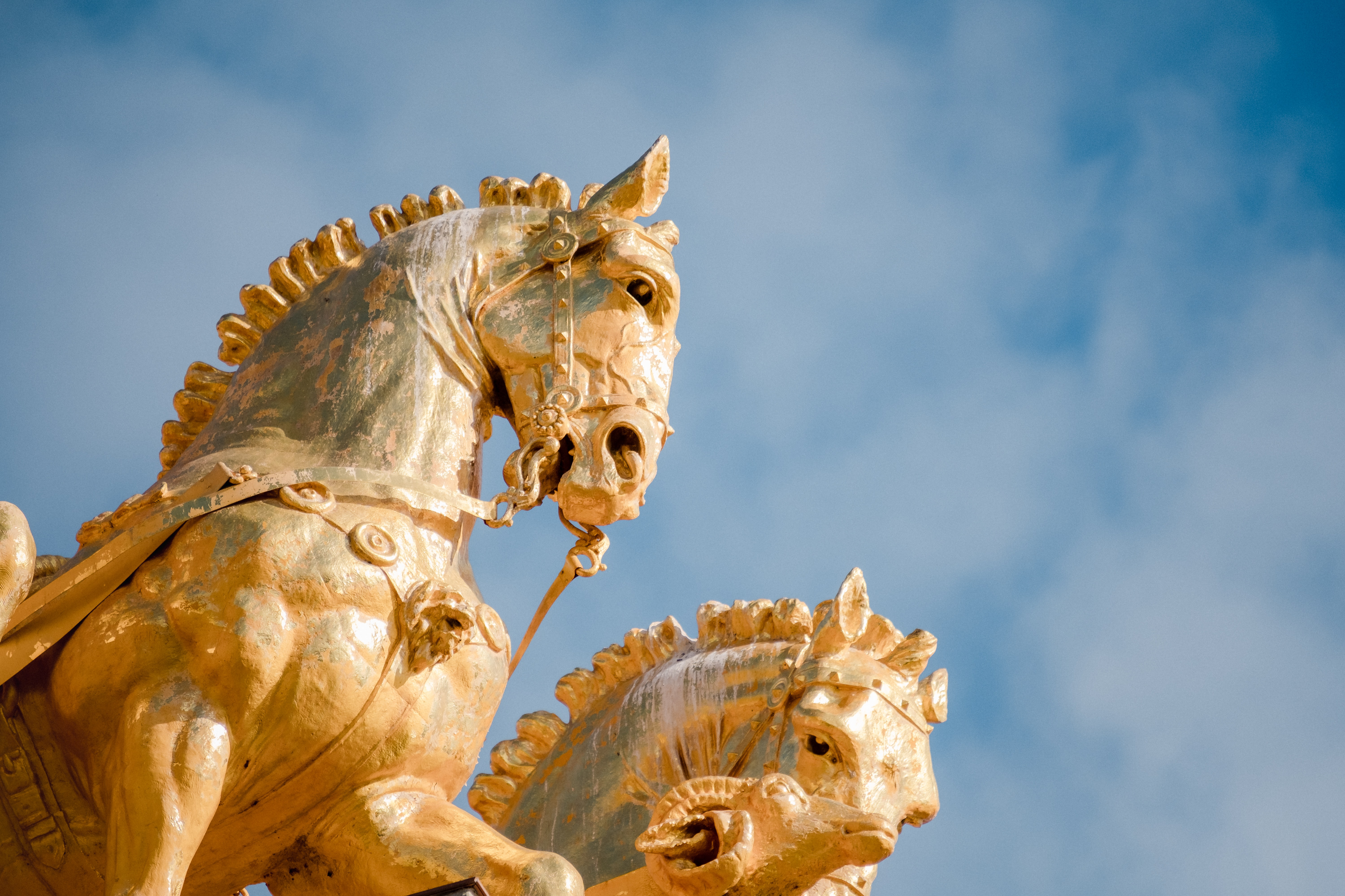 two gold horse statues