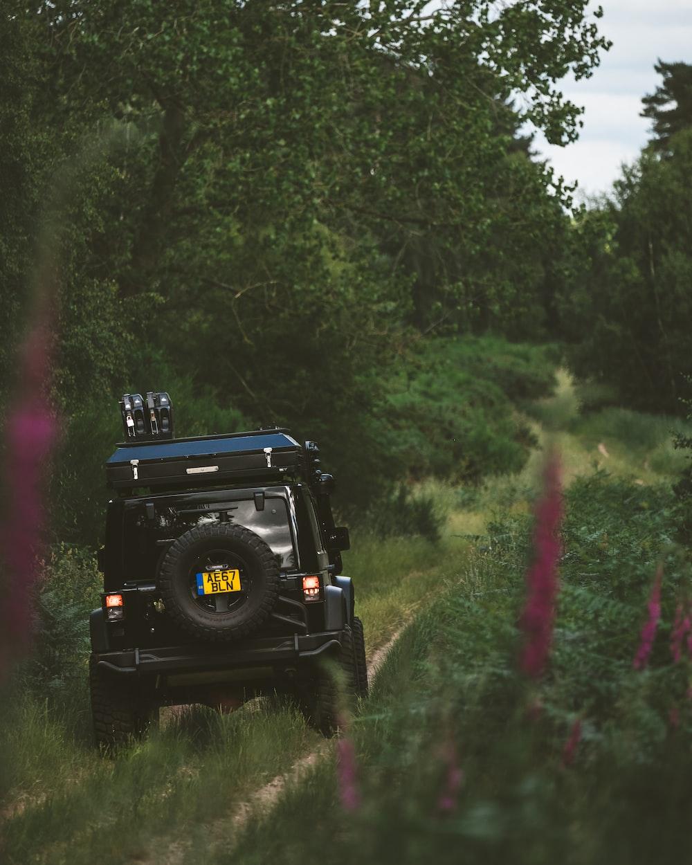 black 4x4 vehicle going through the jungle