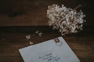 white mailing envelope beside white petaled flower