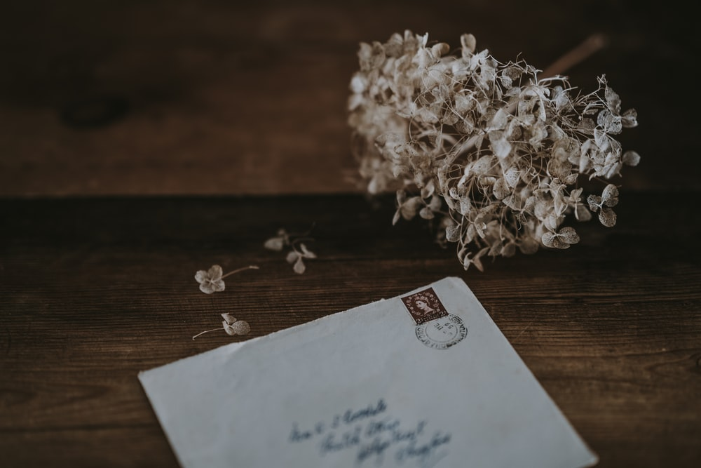white mailing envelope beside white petaled flower