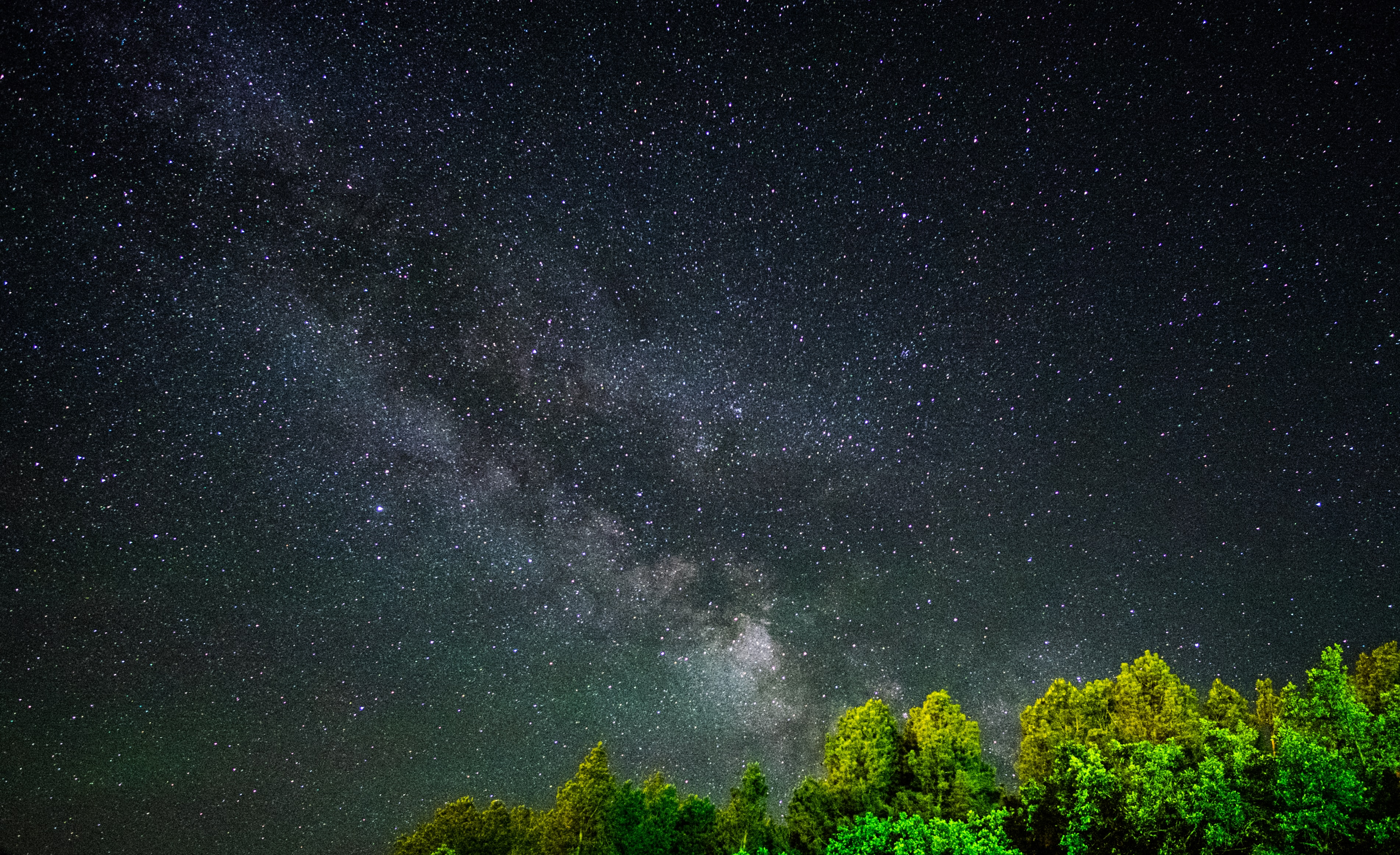 Milky Way Galaxy can be seen through tree leaves