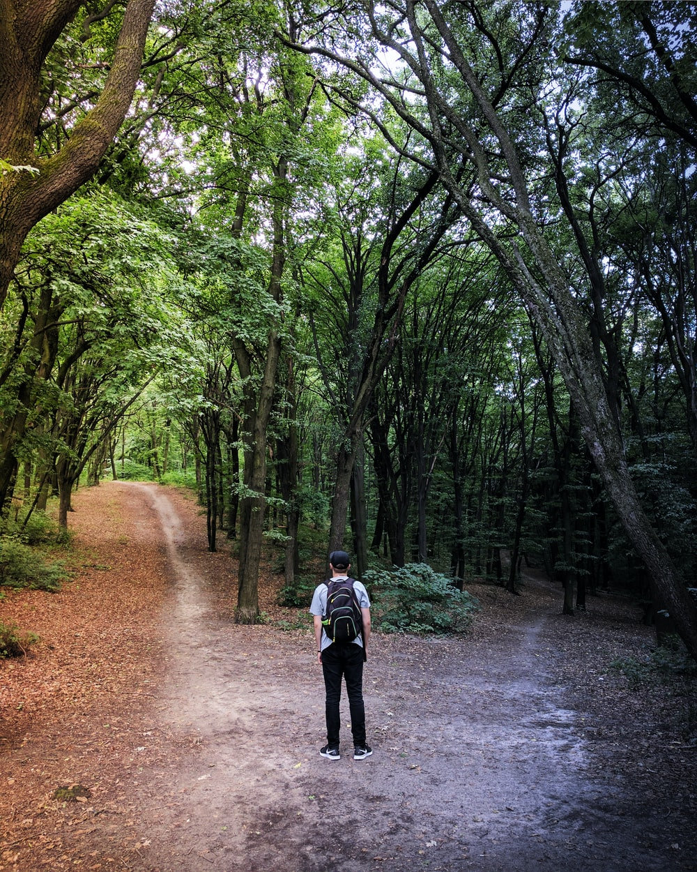 man standing in the middle of woods