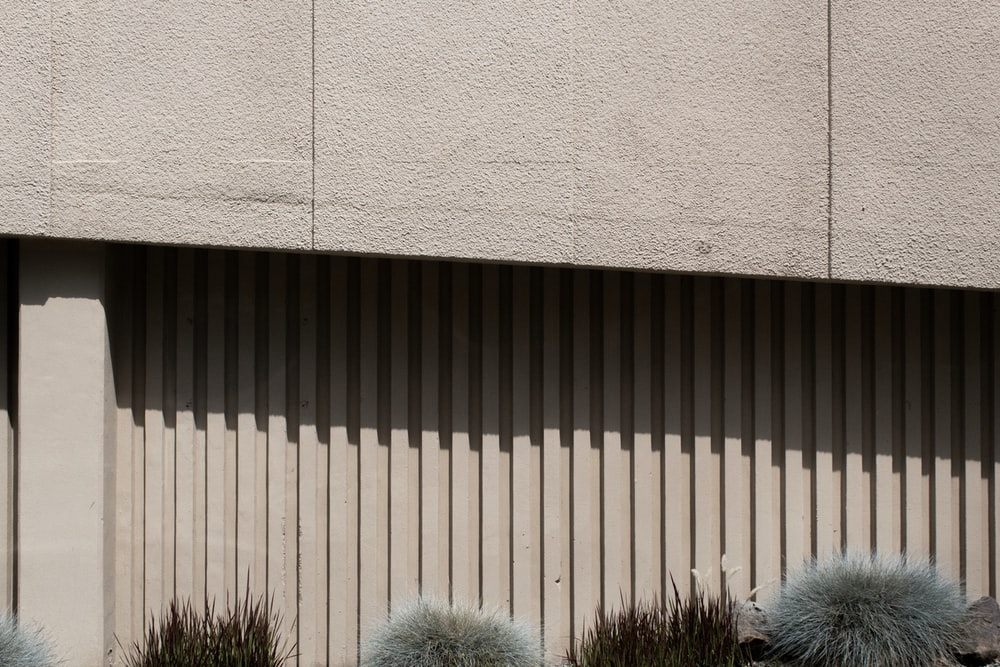 green and brown grass beside gray concrete wall