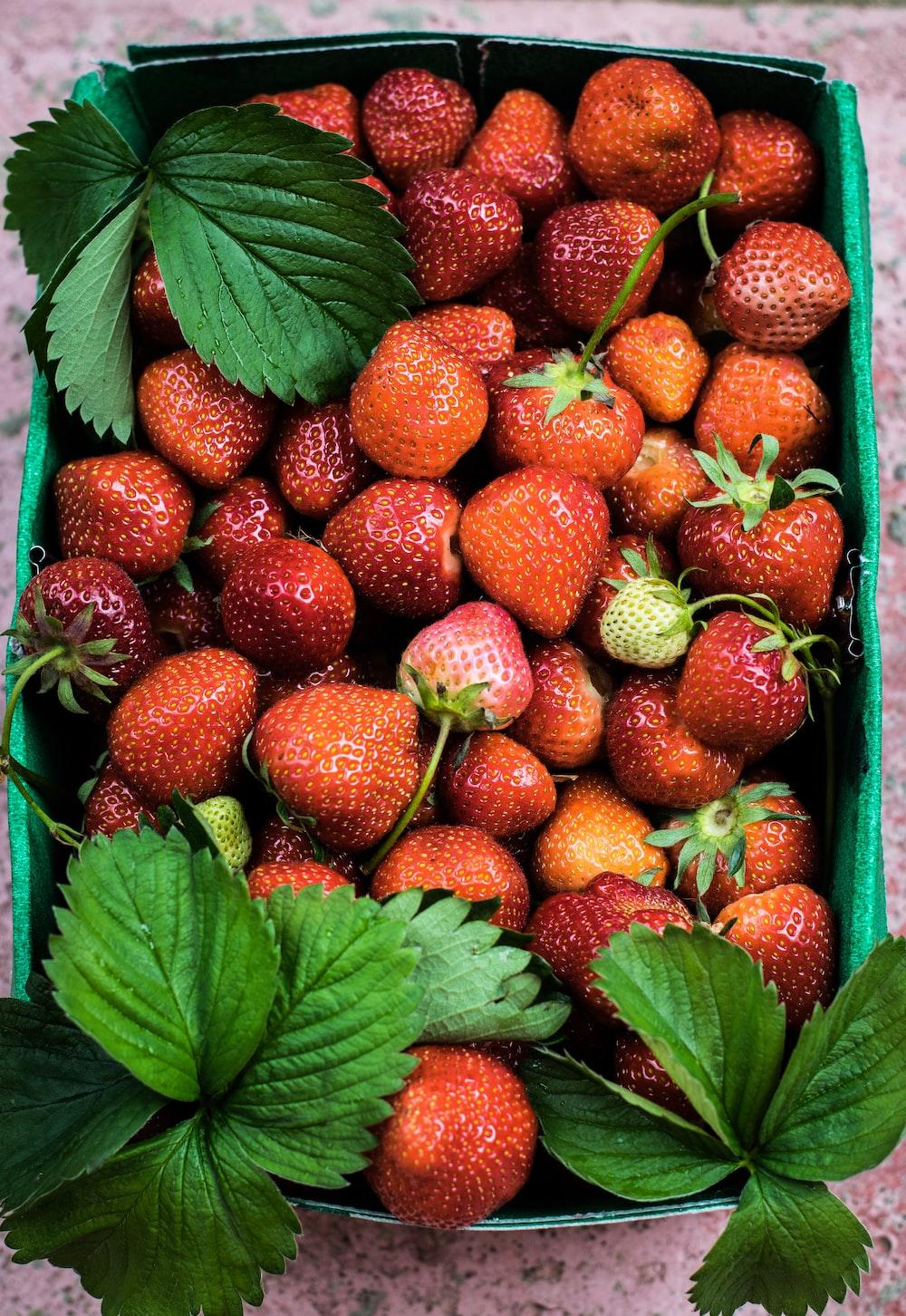 strawberry lot on basket