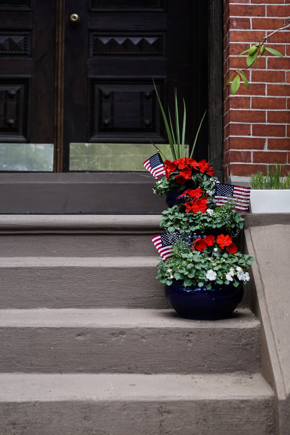 red petaled flowers on vase on top of stairs