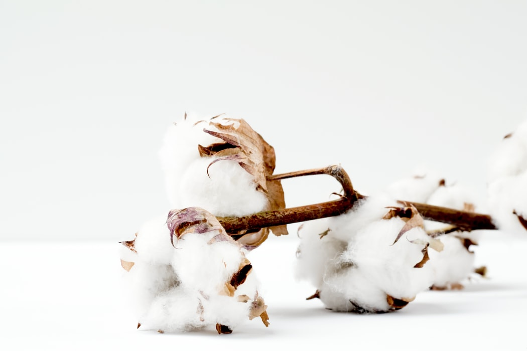 Duurzame materialen voor kleding