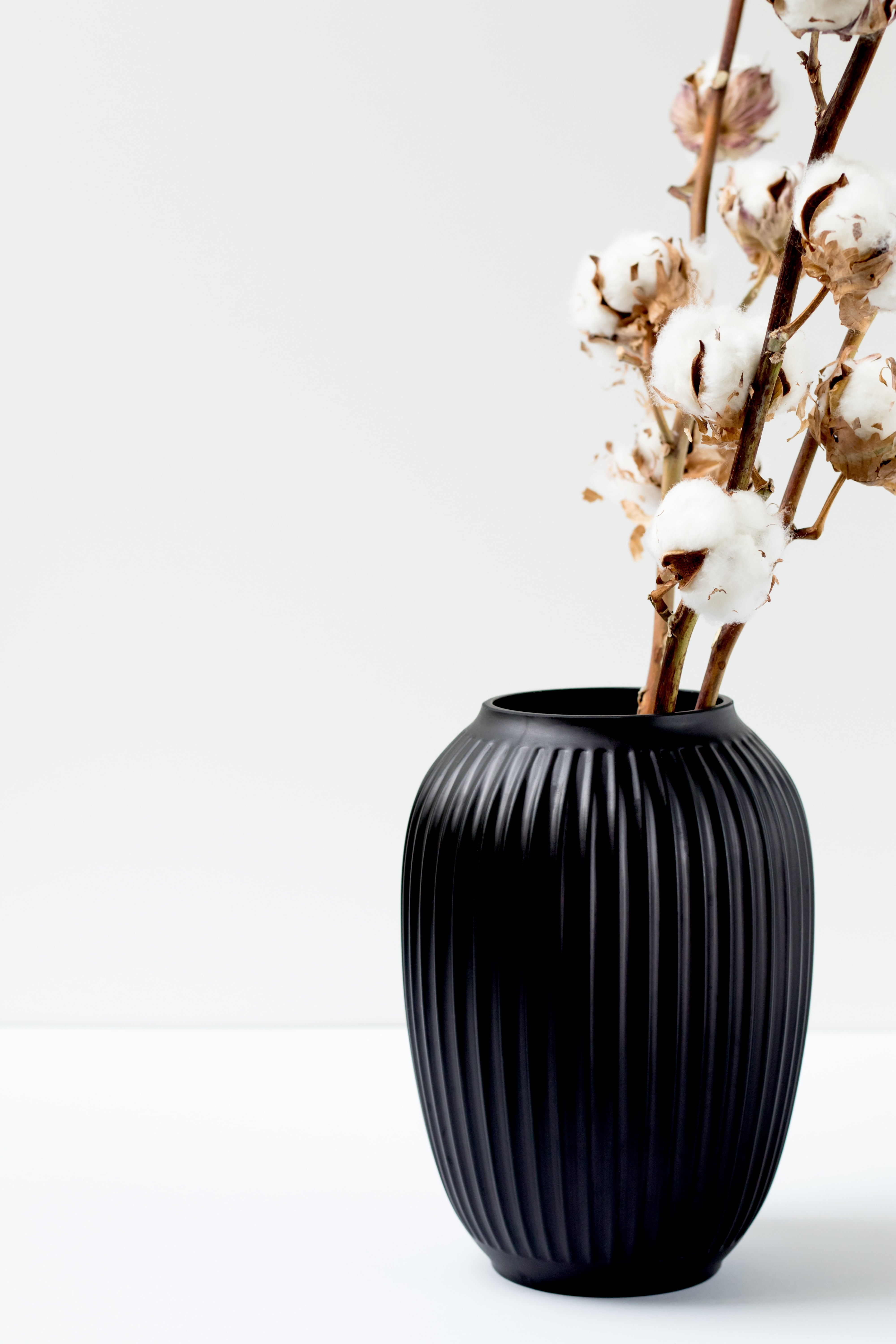 cotton flower in black vase