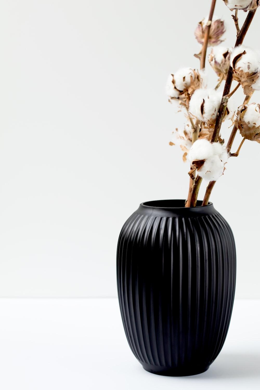 cotton flower in black vase