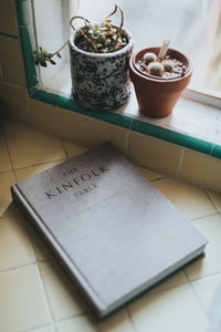 The Kinfolk Table near cactus plant