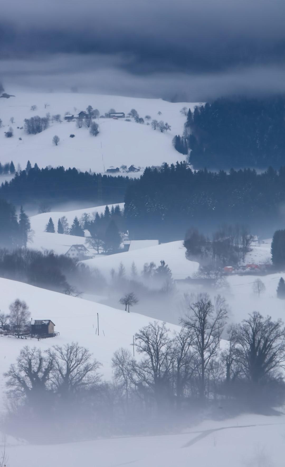 冬云落雪初晨入