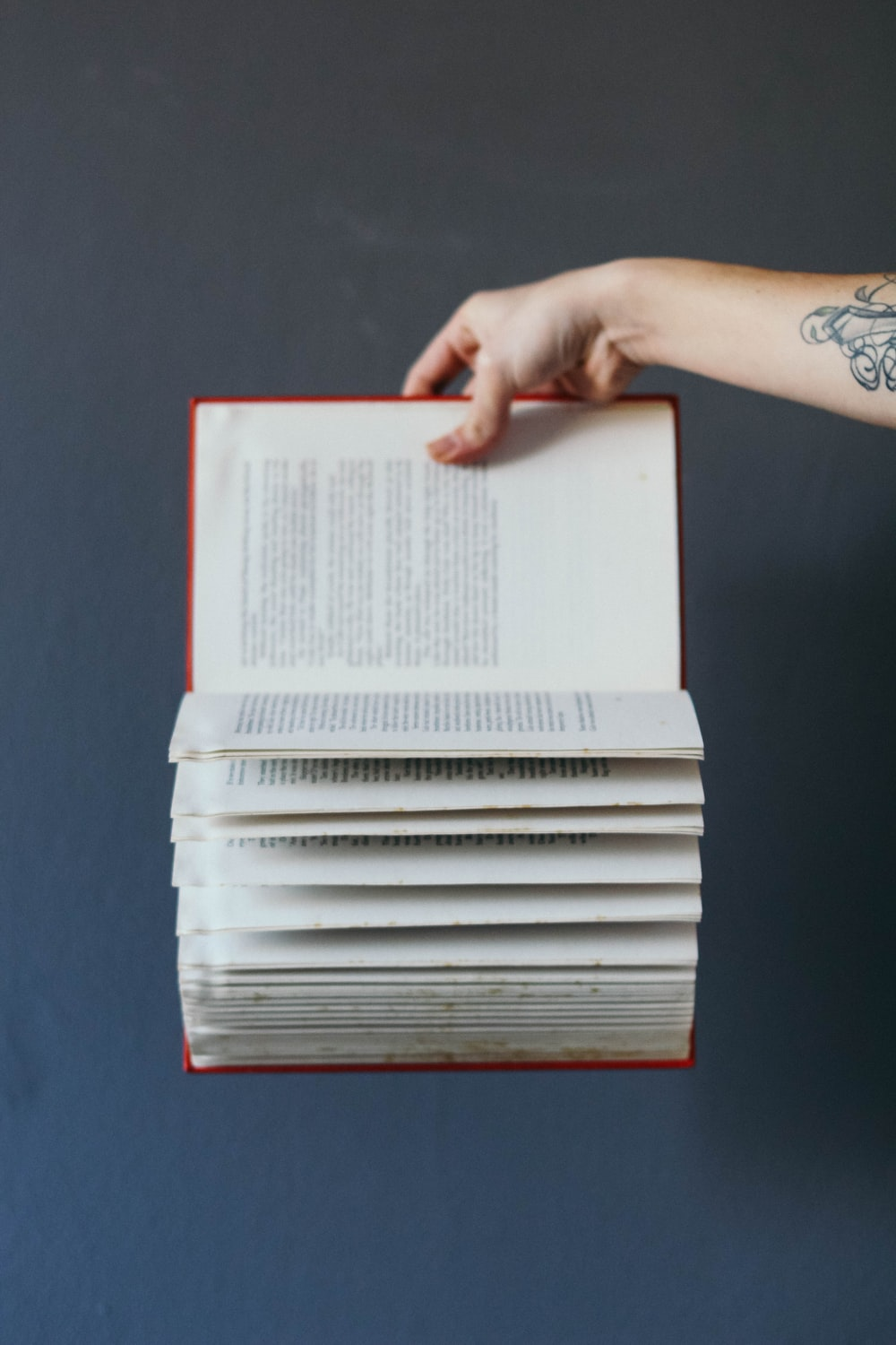 person holding red book