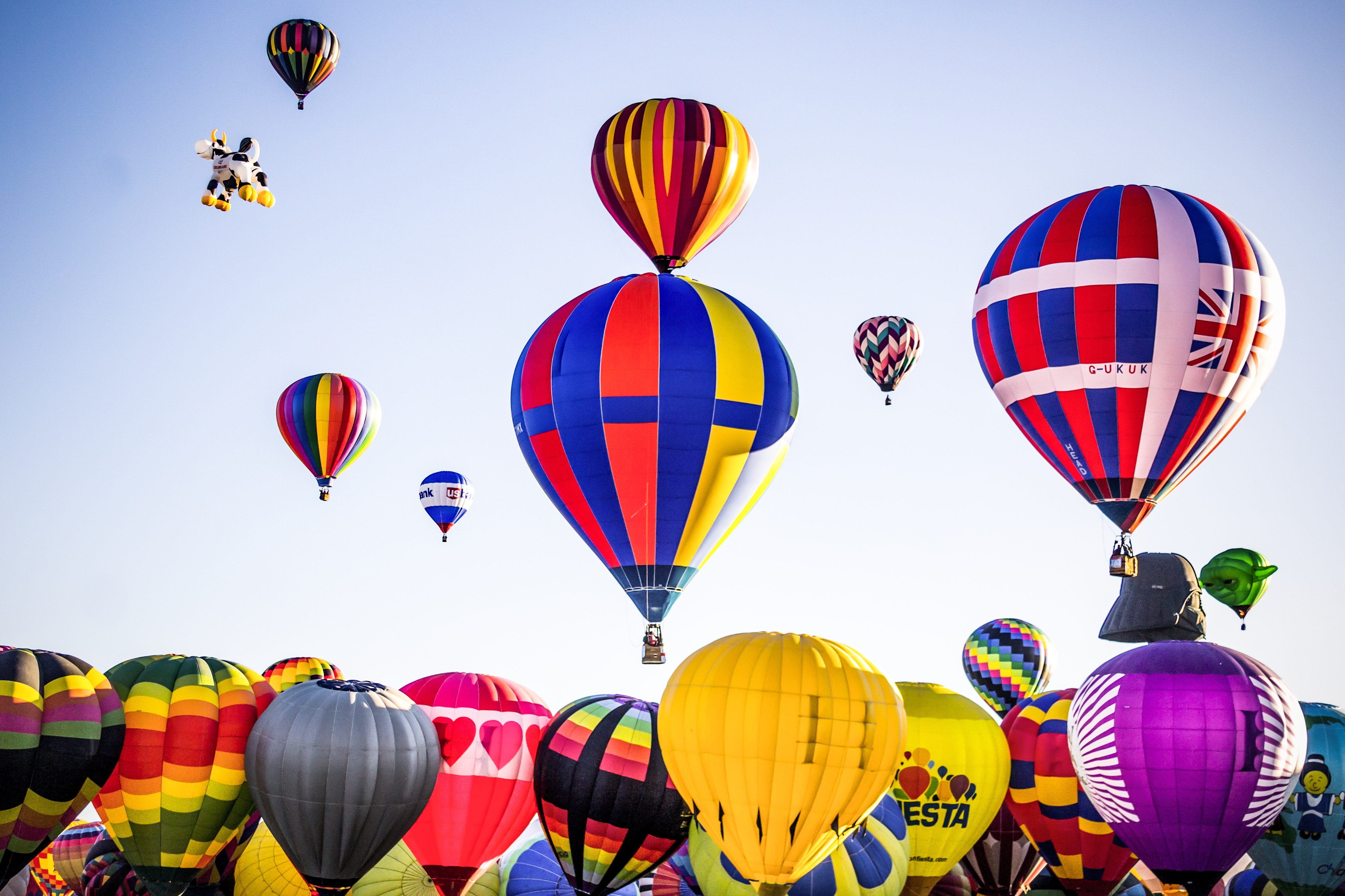 assorted-color hot air balloons