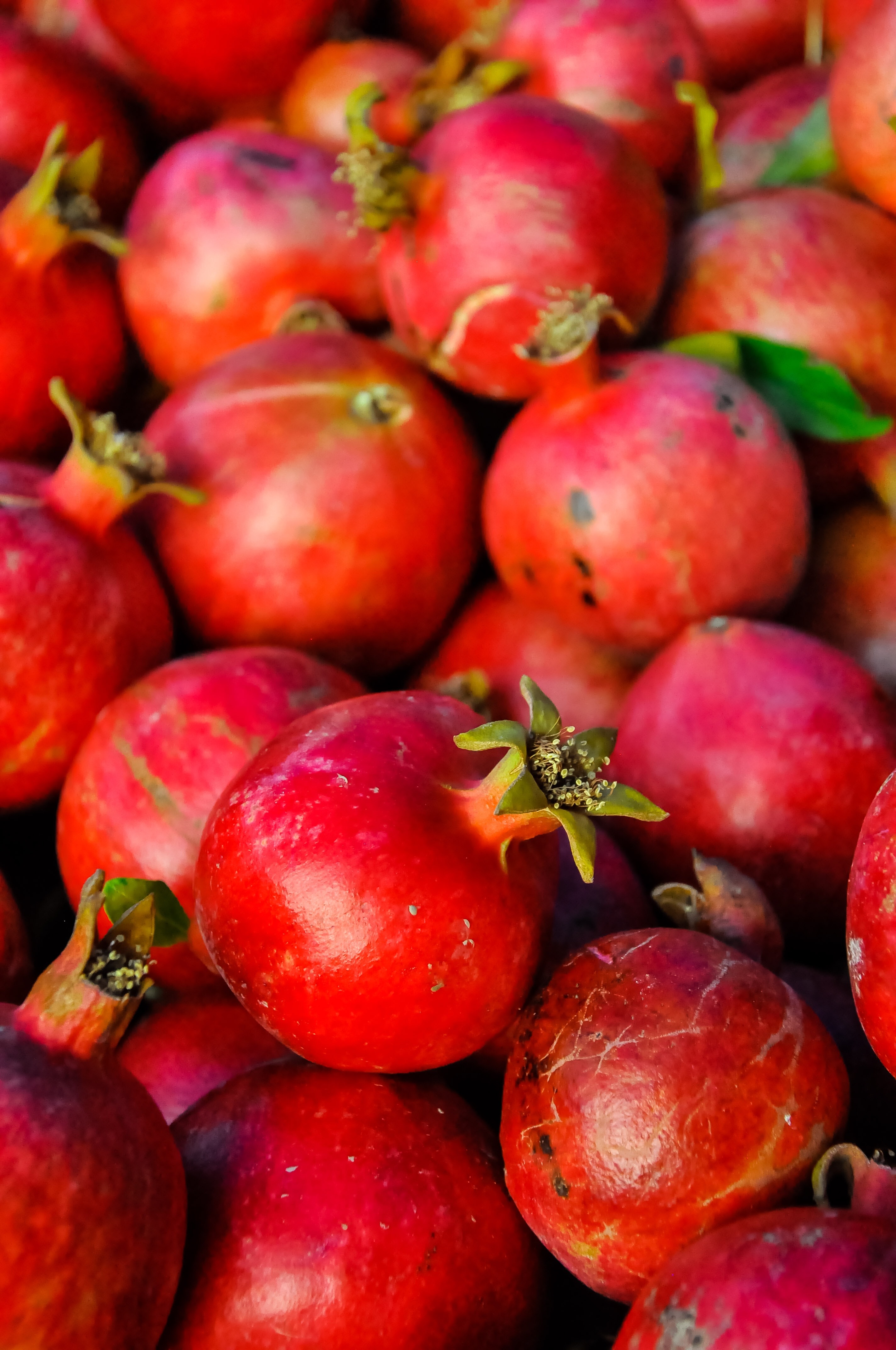 bunch of pomegranate