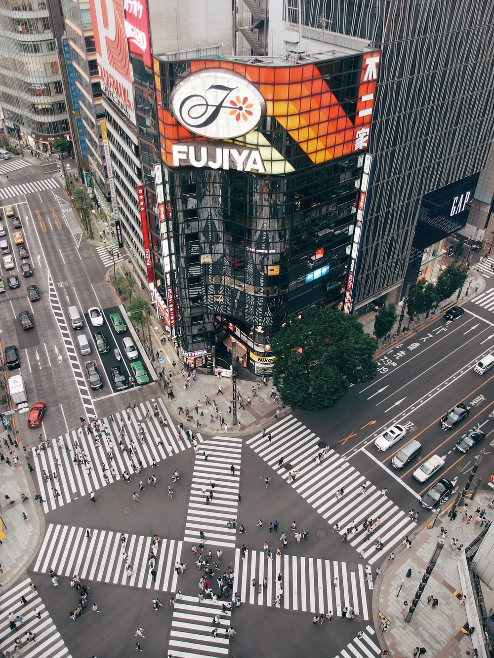 aerial view photography of Fujiya building