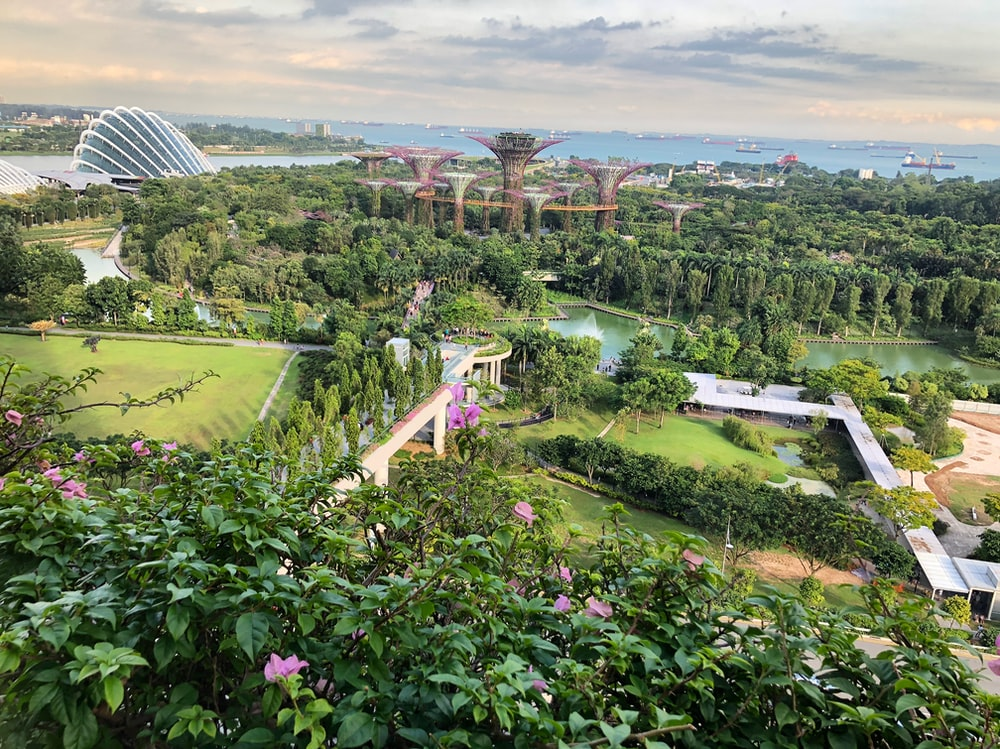 aerial photography of Gardens by the Bay, Singapore