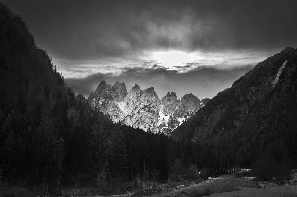grayscale photography of mountain and trees