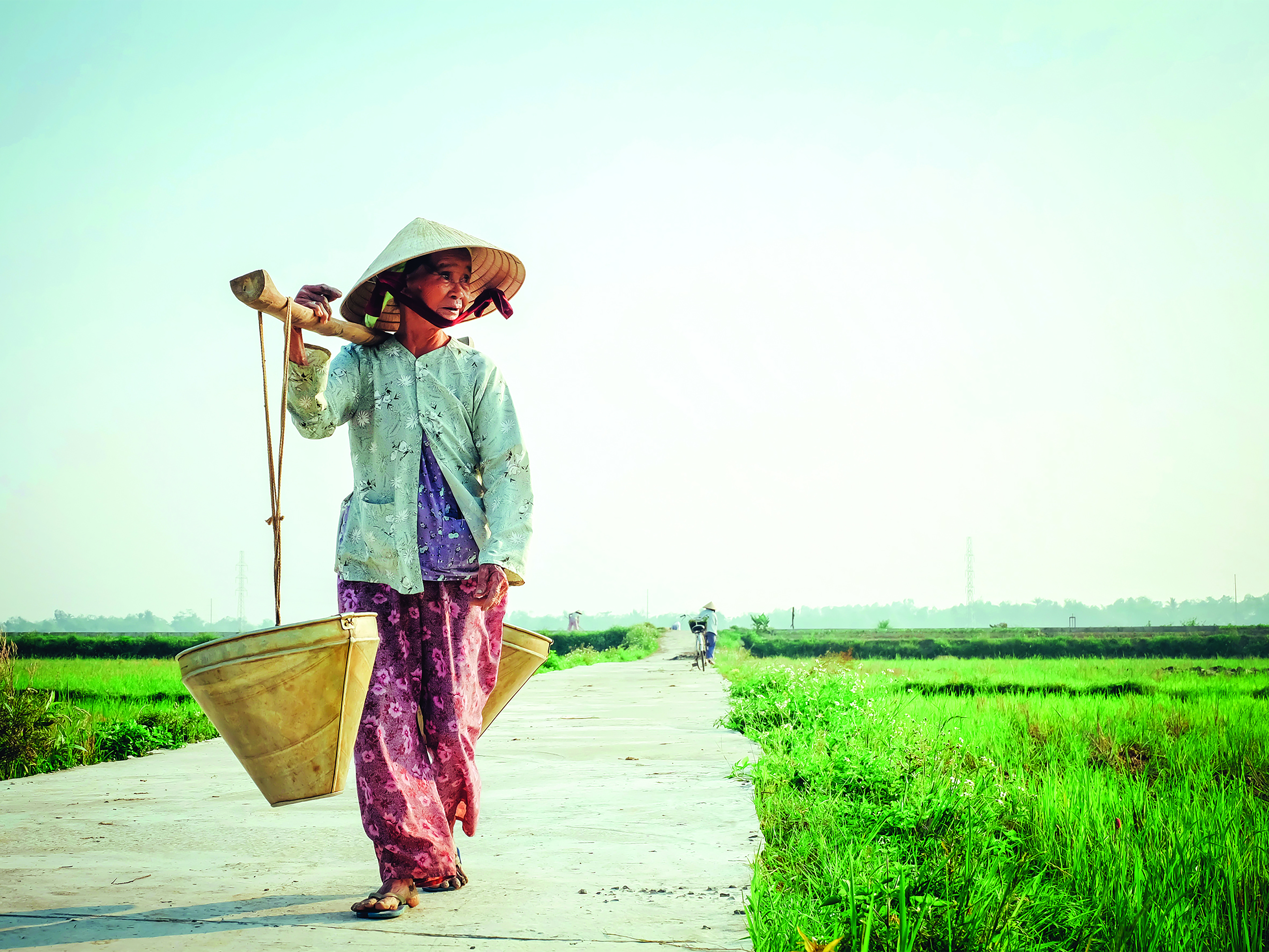 在越南农业创业是什么感受