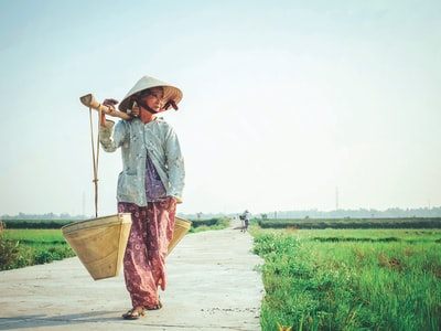 woman carrying basket on her shoulder vietnam zoom background