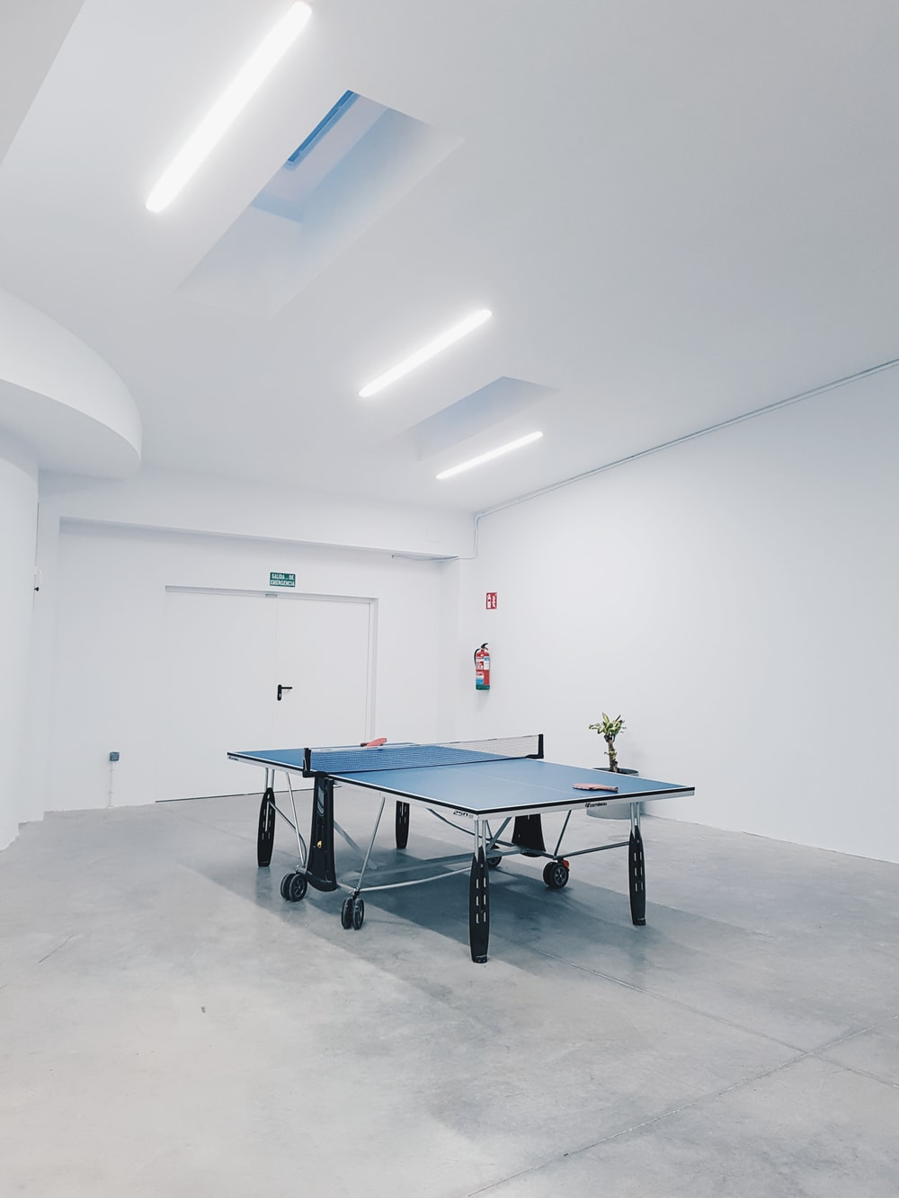 photography of blue table tennis inside a room