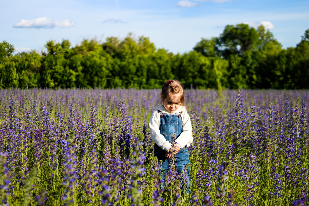 Girl in a blooming field