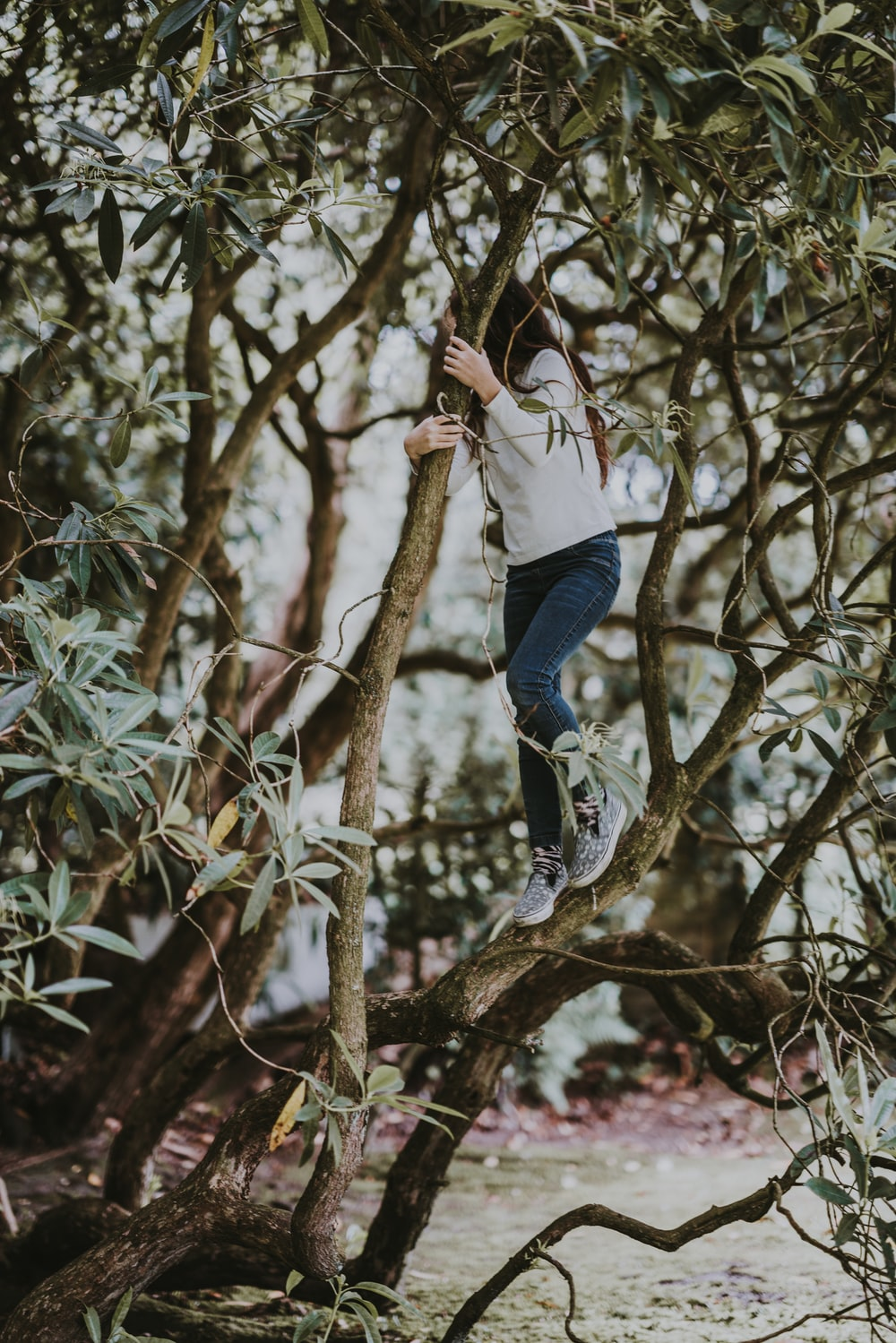 tilt shift photography of woman on tree trunk