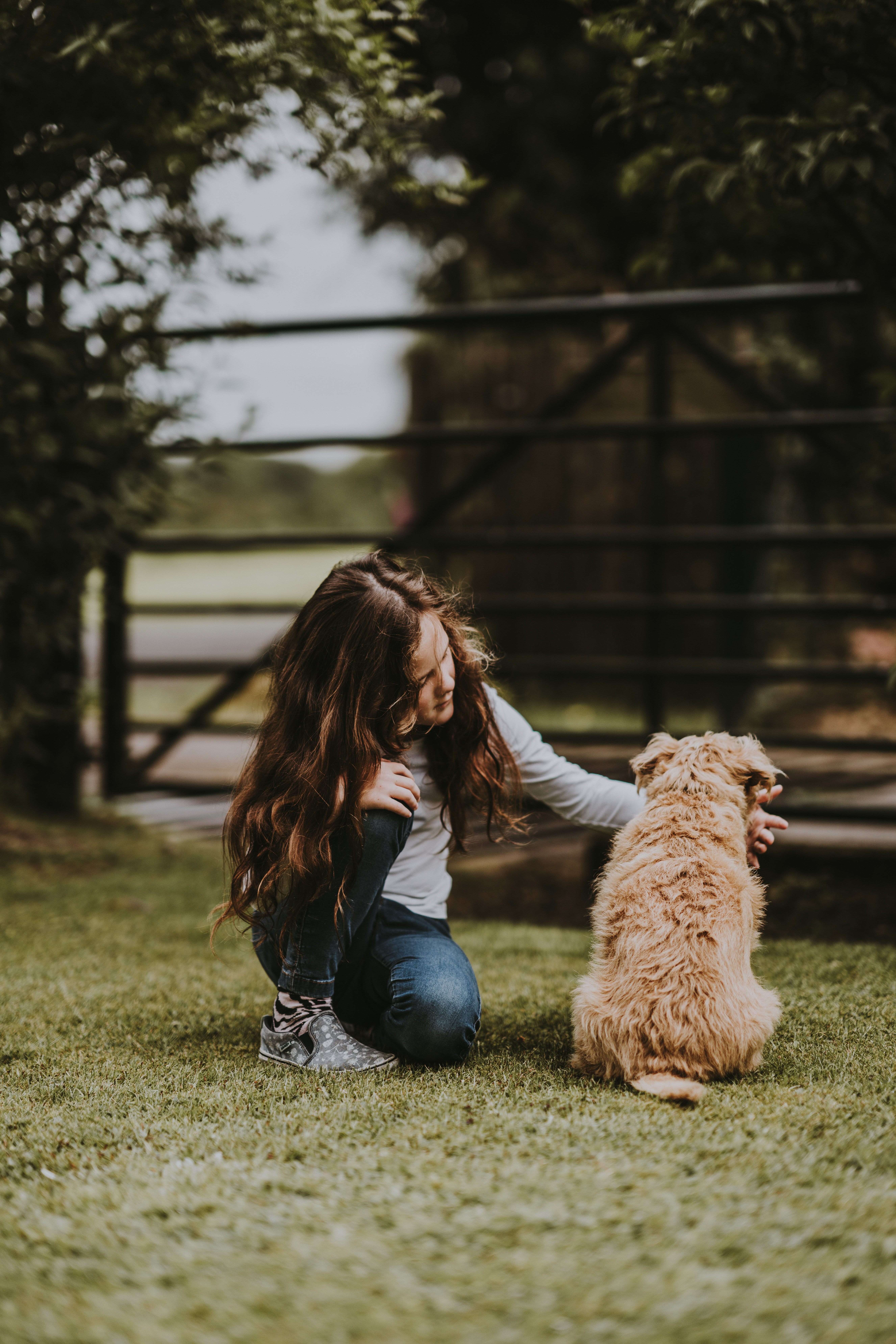 shallow focus photography of child petting puppy