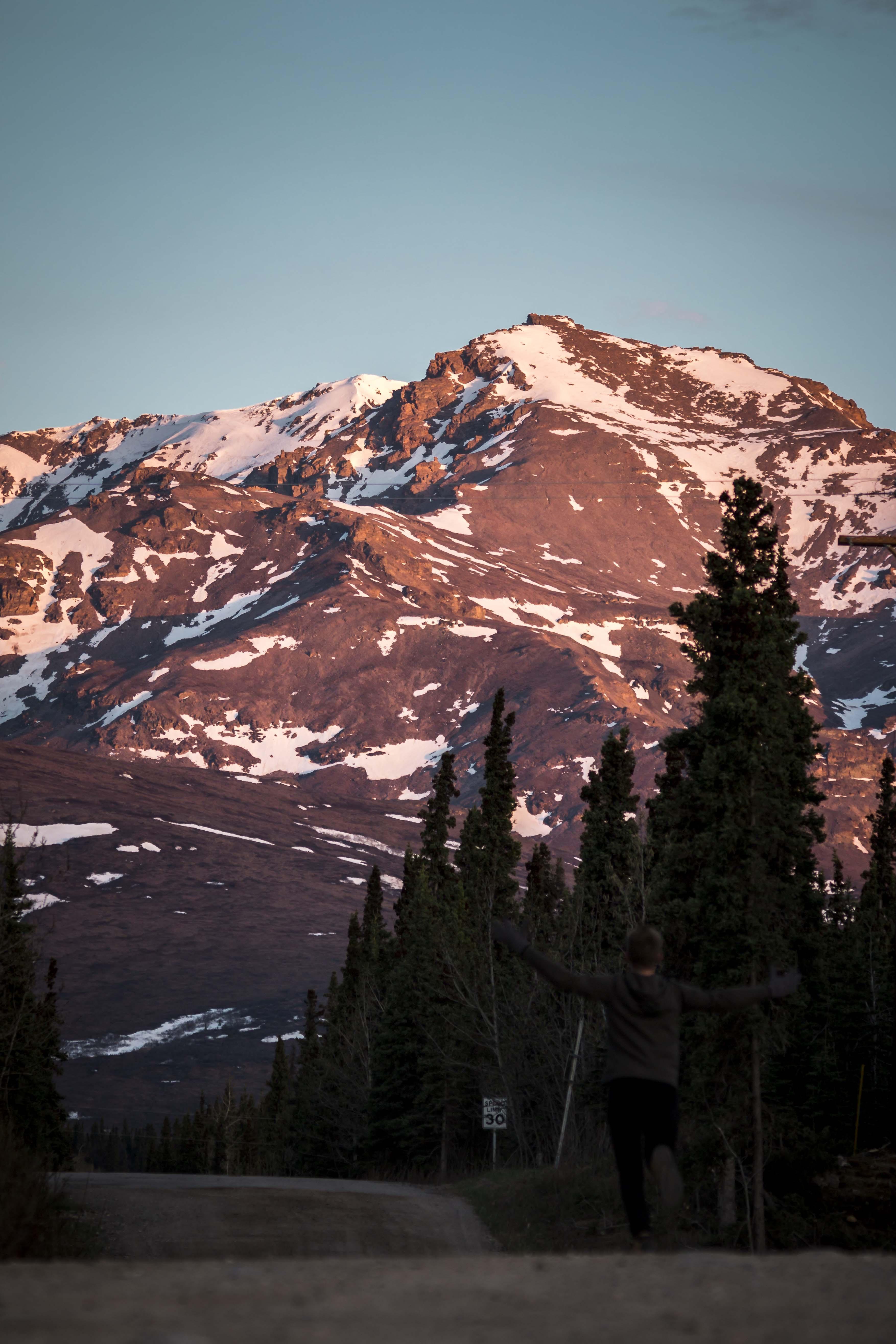 photo of brown mountain near trees