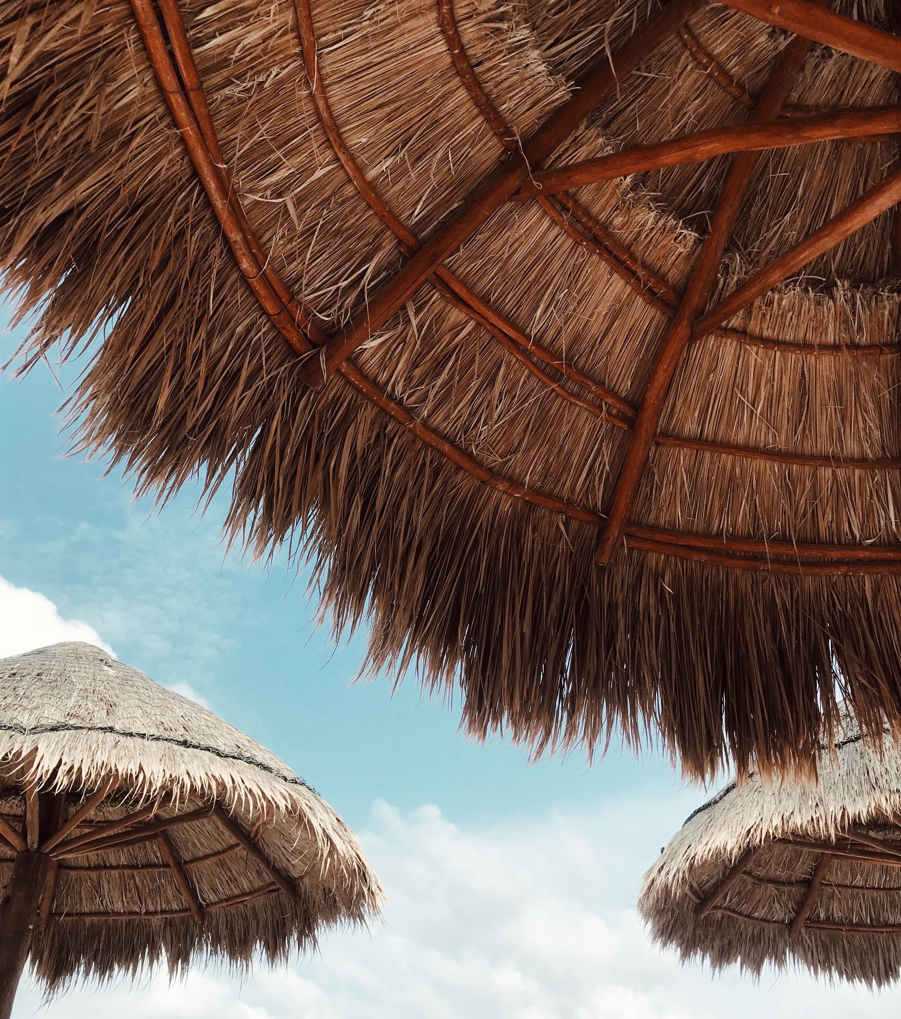 brown thatched roof
