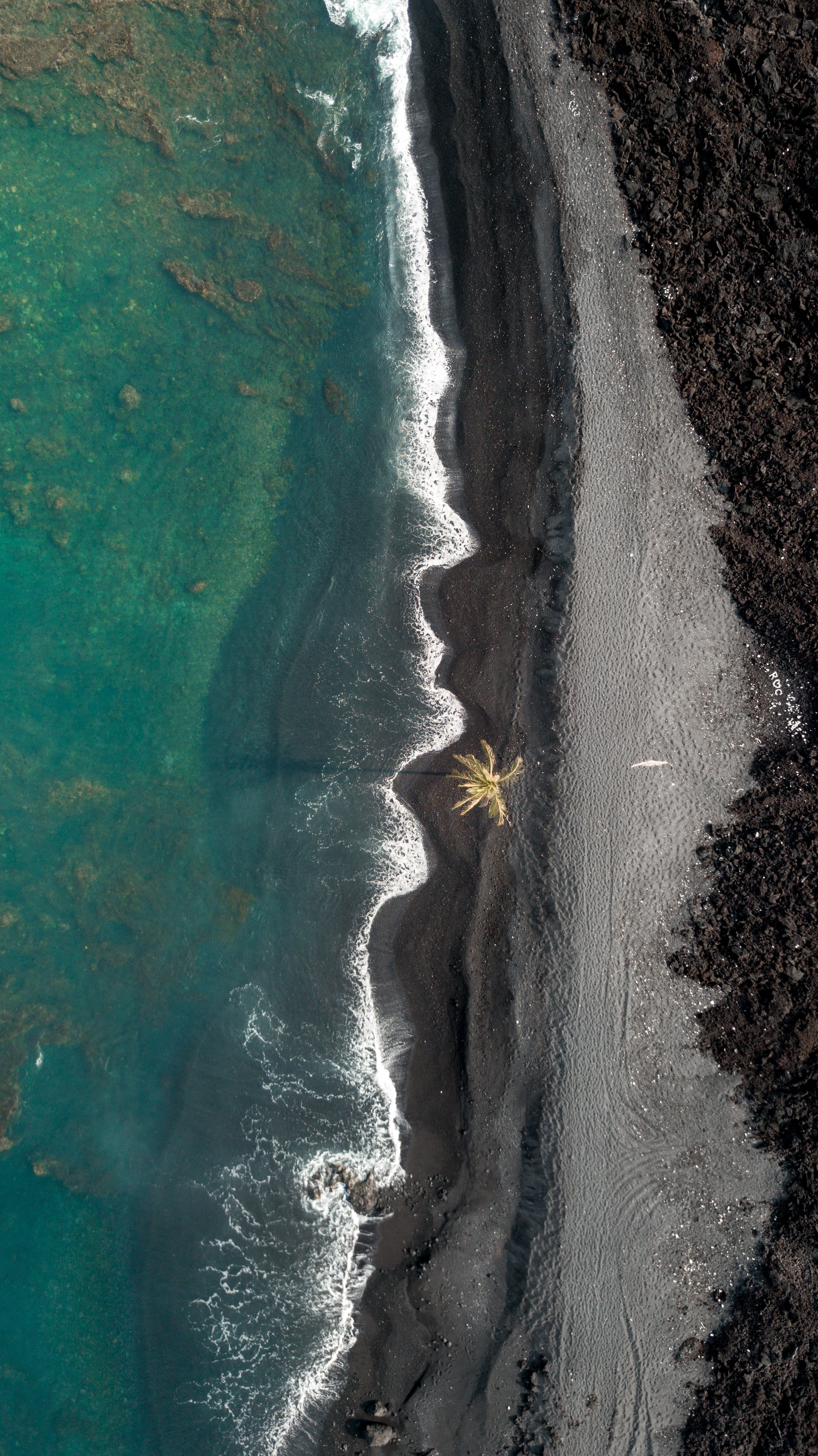 aerial photography of beachside